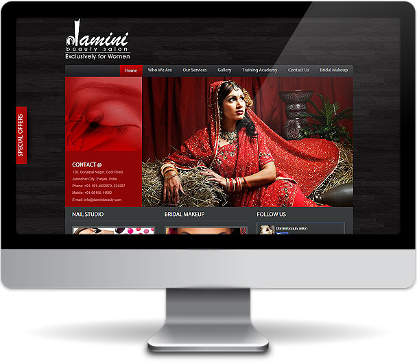 Damini Beauty website